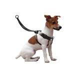 Harnais de dressage EASY WALKER