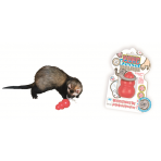 KONG FERRET TREASURE